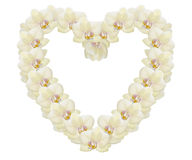 Beautiful heart made of light yellow orchids Royalty Free Stock Photos