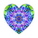 A beautiful heart made of lupine wild flowers collage. Bright mystical heart like a blue, green and voilet crystal for Valentines. Day, wedding or betrothal Royalty Free Stock Photography