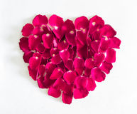 Beautiful heart of pink rose petals Royalty Free Stock Photography