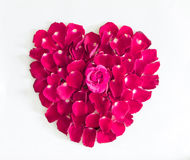 Beautiful heart of pink rose petals Royalty Free Stock Photos