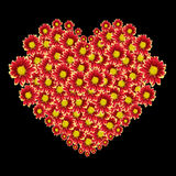 Beautiful heart of red flower and love text isolated on black. Saved with clipping path Royalty Free Stock Images