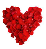 Beautiful heart of red rose petals. Over the white stock photos