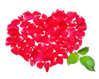 Beautiful heart of red rose petals isolated on white background Stock Images