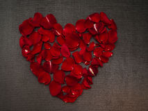 Beautiful heart shape with rose petals Stock Images