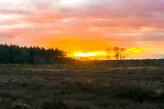 Beautiful heather landscape at sunset, sundown giving an amazing colorful effect in the sky and clouds royalty free stock photography