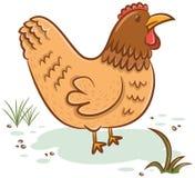 Beautiful hen character Stock Photography