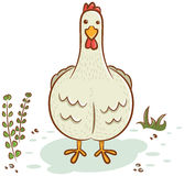 Beautiful hen character Stock Image