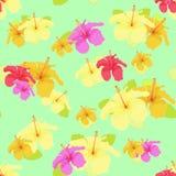 Beautiful hibiscus flower on green. vector illustration seamless Stock Photo