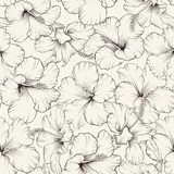Beautiful hibiscus pattern Stock Image