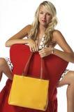 Beautiful High Fashion Model Royalty Free Stock Photography