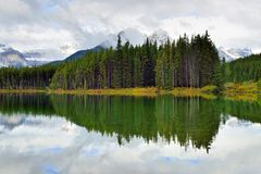 Beautiful high mountains of the Canadian Rockies reflecting in an alpine lake along the Icefields Parkway between Banff and Jasper. In the fall royalty free stock photography