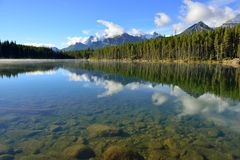 Beautiful high mountains of the Canadian Rockies reflecting in an alpine lake along the Icefields Parkway between Banff and Jasper stock images