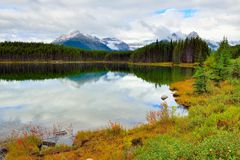 Beautiful high mountains of the Canadian Rockies reflecting in an alpine lake along the Icefields Parkway between Banff and Jasper. During foliage season with Stock Photos