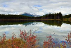Beautiful high mountains of the Canadian Rockies reflecting in an alpine lake along the Icefields Parkway between Banff and Jasper royalty free stock images