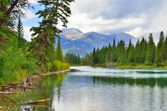 Free Beautiful High Mountains Of The Canadian Rockies Reflecting In An Alpine Lake Along The Icefields Parkway Between Banff And Jasper Royalty Free Stock Photography - 100022127