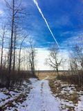 Beautiful hike through elk island national park in Alberta, Canada with a jet passing overhead royalty free stock image