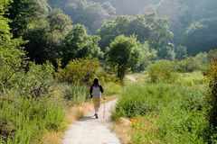 Beautiful hiking scene. Hot summer landscape with a person on a meadow trail Stock Photos