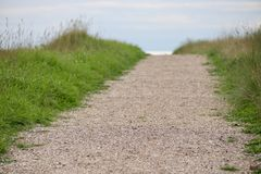 Beautiful walking path through the dunes royalty free stock images