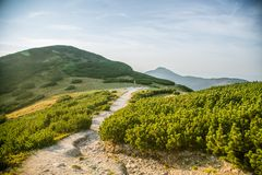 A beautiful hiking trail in the mountains. Mountain landscape in Tatry, Slovakia. royalty free stock photo