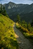 A beautiful hiking trail in the mountains. Mountain landscape in Tatry, Slovakia. Walking path scenery stock photo