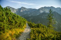 A beautiful hiking trail in the mountains. Mountain landscape in Tatry, Slovakia. Walking path scenery royalty free stock photo