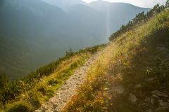A beautiful hiking trail in the mountains. Mountain landscape in Tatry, Slovakia. Walking path scenery stock photos