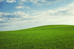 Beautiful hill landscape Stock Photo