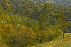 Beautiful hills Stock Photo