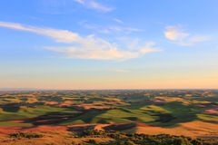 Beautiful Hills of Palouse Stock Photography