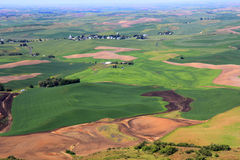 Beautiful Hills of Palouse Stock Image