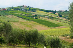 Beautiful hills in the province of Teramo. In Italy Royalty Free Stock Photography