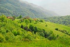 Beautiful hills on spring Stock Photo