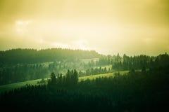A beautiful hillside scenery of Tatra mountains. Royalty Free Stock Image