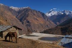 Beautiful Himalayan Landscape Royalty Free Stock Photography