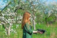 Beautiful hipster girl in apple garden. stock image