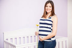 Beautiful Hispanic pregnant woman. Portrait of a gorgeous young Hispanic pregnant woman holding a flower and touching her belly while standing next to a crib Stock Images