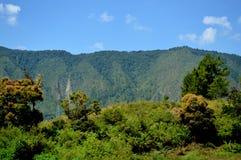 Toba Lake royalty free stock photo