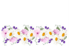 Beautiful holiday flower banner border. Royalty Free Stock Photos