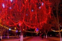 Beautiful holiday illumination. New Year decorated tree in a park. Beautiful holiday illumination close up Stock Images
