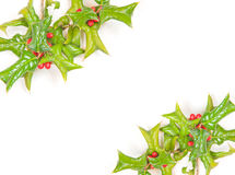 Beautiful holly berry decorative Royalty Free Stock Photos