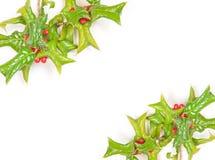 Beautiful holly berry decorative Royalty Free Stock Photos