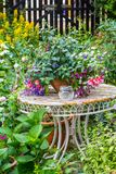 Beautiful home garden with lots of blooming flowers, plants and garden table. Beautiful home garden with lots of blooming flowers, , fuchsia, lobelia, plants and stock image