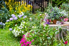 Beautiful home garden with lots of blooming flowers, plants and garden table. Beautiful home garden with lots of blooming flowers, , fuchsia, lobelia, plants and Royalty Free Stock Photography