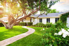 Beautiful Home With Green Grass Yard. Beautiful white color single family home in Phoenix, Arizona USA with big green grass yard, large tree and roses royalty free stock photos