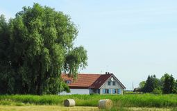 White home and hair balls, Lithuania Royalty Free Stock Image