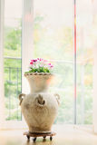 Beautiful home interior decoration with amphora vase and flowers Royalty Free Stock Images