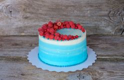 Beautiful homemade cake with blue cream and raspberry and currant berries. Beautiful homemade cake with white and blue cheese cream and raspberry and currant Royalty Free Stock Images