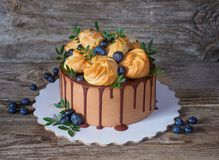 Beautiful homemade cake with profiteroles and blueberries royalty free stock photo