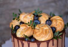 Beautiful homemade cake with profiteroles and blueberries stock photography