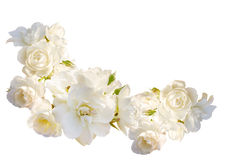Beautiful  horizontal frame with bouquet of white roses with rain drops isolated on white background Stock Photography